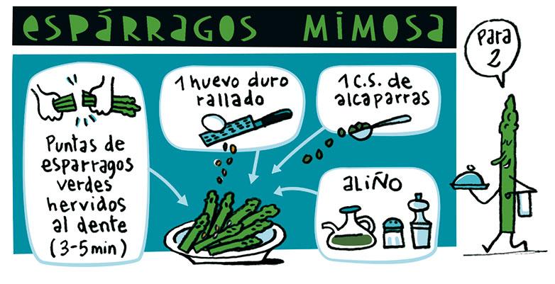 esparragos-mimosa